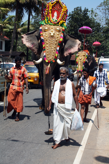 western-ghats-fest-trolley-tourist