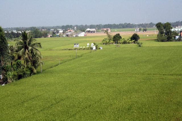 fahrt-mekong-delta-trolley-tourist