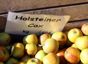 aepfel-holsteiner-cox-trolley-tourist