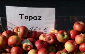 apfel-topaz-trolley-tourist