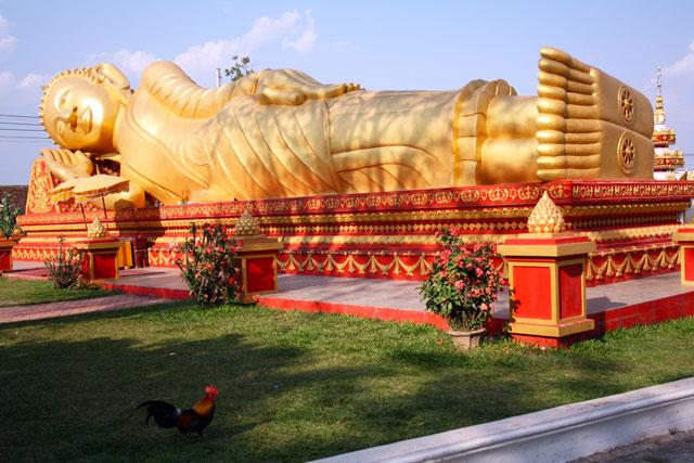 pha-that-buddha-trolley-tourist