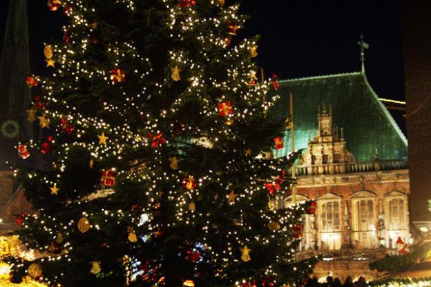 weihnachtsbaum-trolley-tourist