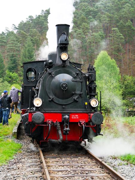 kuckucksbaehnel-pfaelzerwald-trolley-tourist