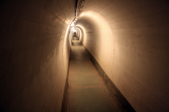 bunker-gang-trolley-tourist
